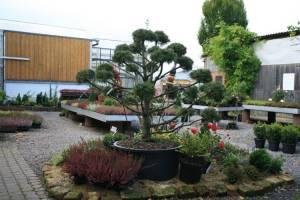 Gärtnerei Ziemons - Aussenbereich