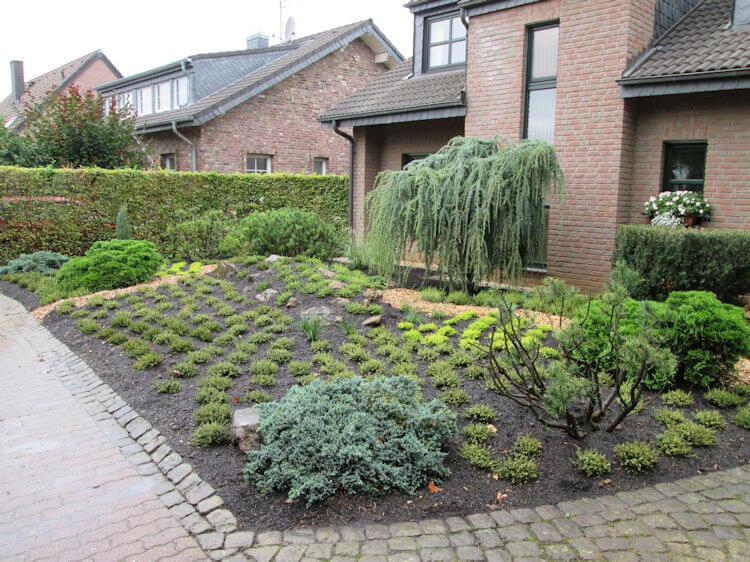 Neugestalteter Vorgarten mit Heidecharakter