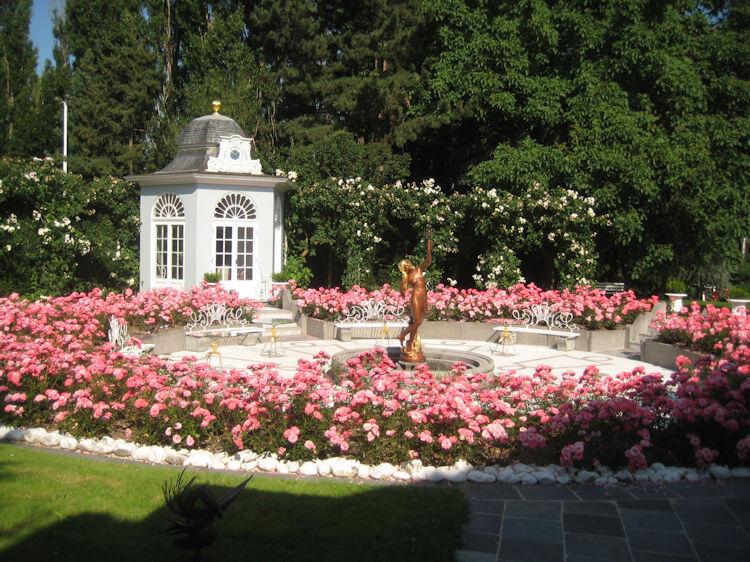 Rosenrondell, Gartenbau
